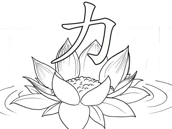 Flower petal line art sketches google search sketches for flower petal line art sketches google search mightylinksfo