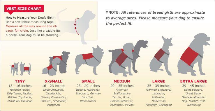 Emotional Support Animal Identification Kit - Emotional Support | Service  dogs, Emotional support animal, Emotional support dog