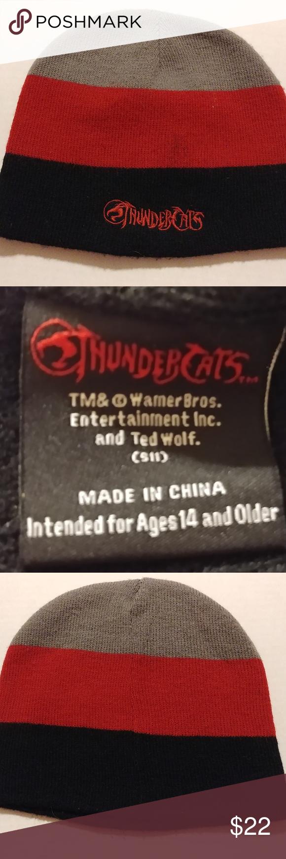 Thundercats beanie Color block, Thundercats, Beanie