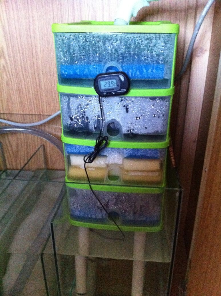 Diy trickle filter with sump for Fish tank sump pump