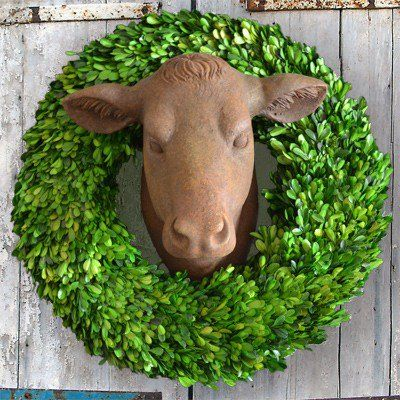 Cow Head Wall Mount Mounted Cow Head Cow Heads Farmhouse Style Cow Head Decor Cow Decor Cow Head
