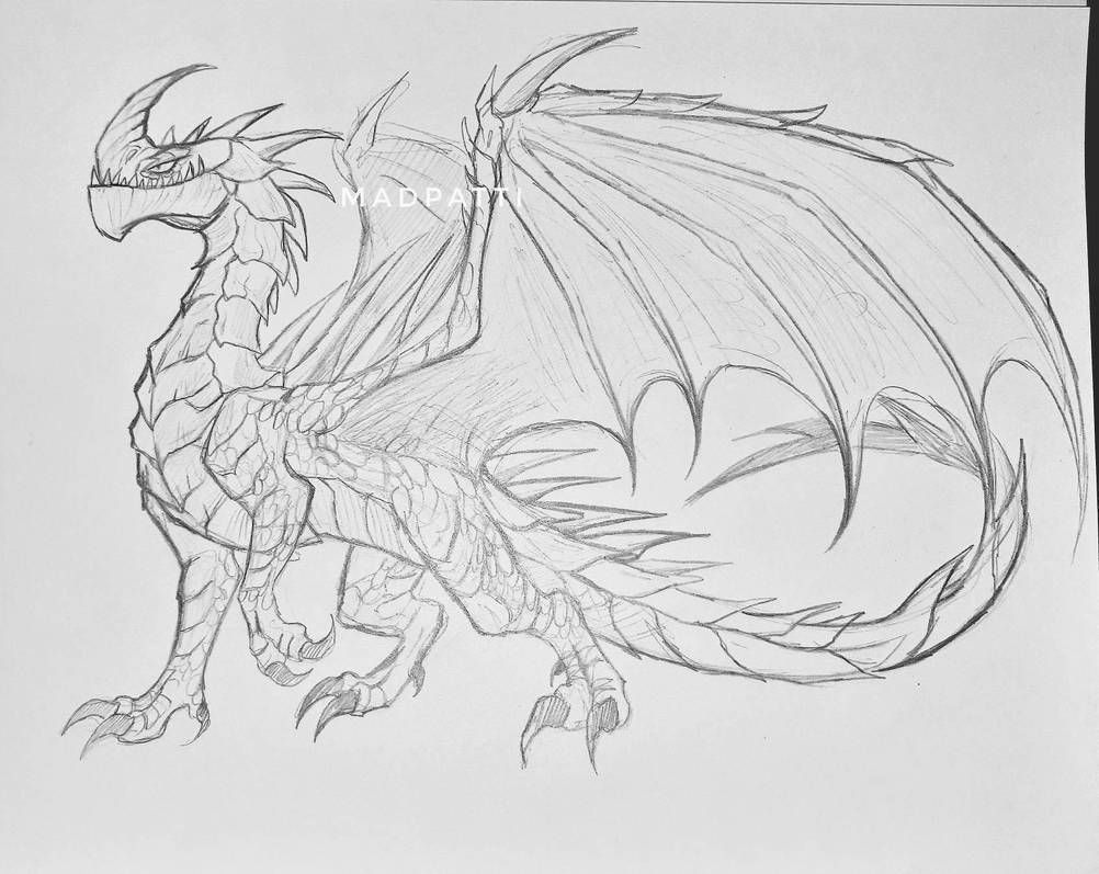 Razorwhip Drawing Dragon Sketch Dragon Drawing Dragon Artwork