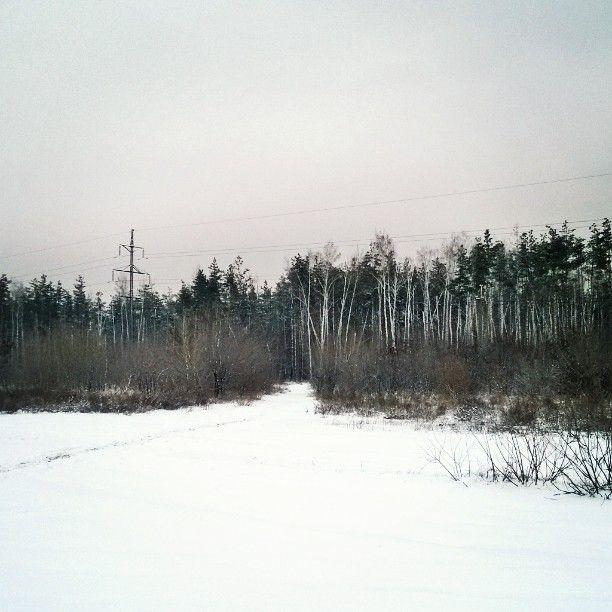 By radistkacat11078: #winter #December #nature #forest #snow #landscape #snowlandscape #field #road #зима #декабрь #зимнийпейзаж #лес #дорога #поле #снег #снежок #заснежело Полеее русскоое пооолеее #landscape #contratahotel