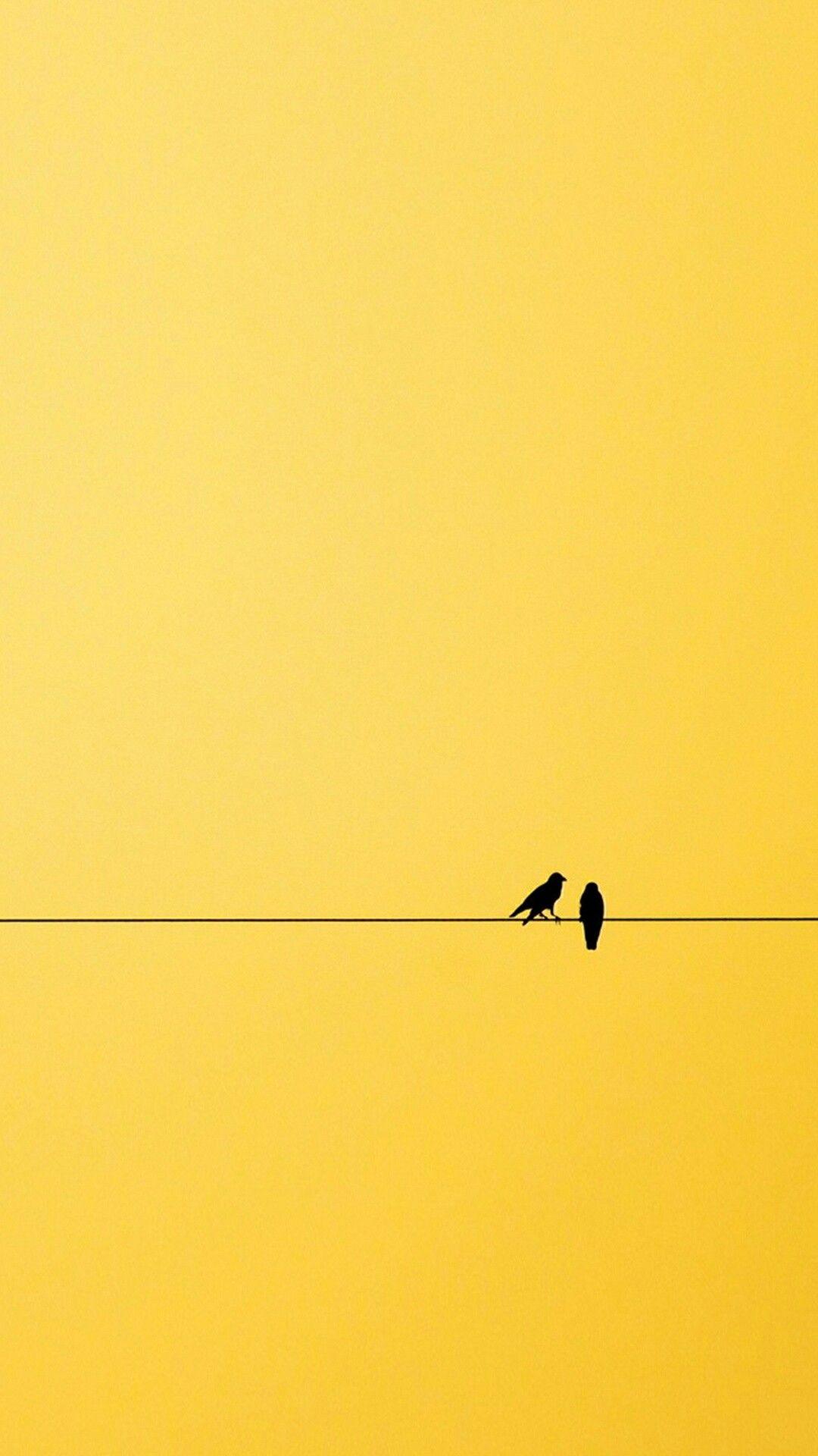 #yellow #birds | Minimalist photography, Yellow aesthetic ...