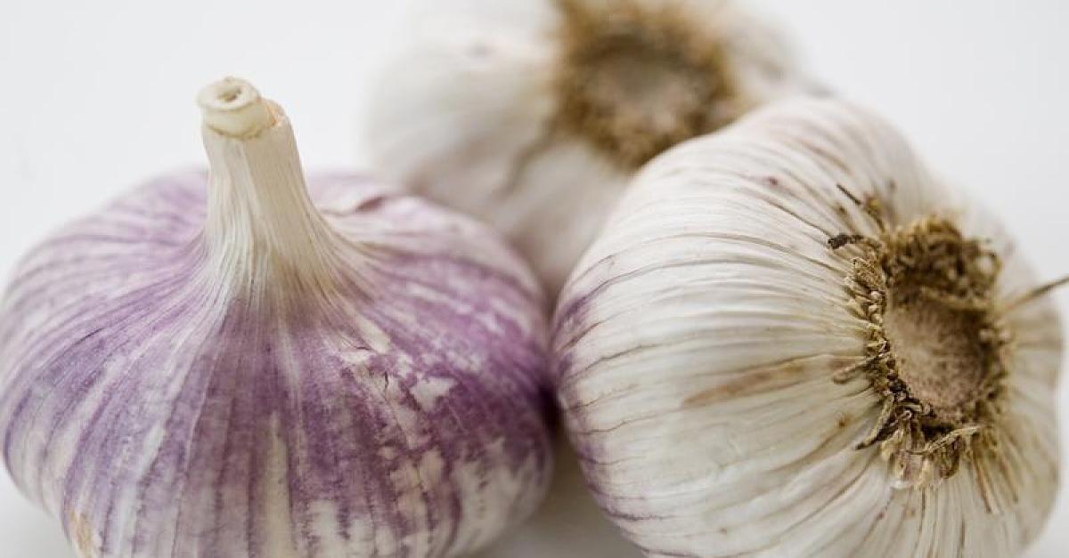 13 gute Gründe: Das passiert, wenn ihr jeden Tag ein Stück Knoblauch esst