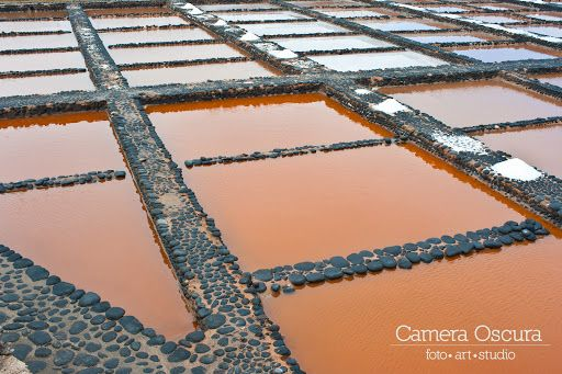 Fuerte Ventura 2014  #fuerteventura #fuerte #cameraoscurastudio #colombinofavazzi #frankjuliuspetolelli