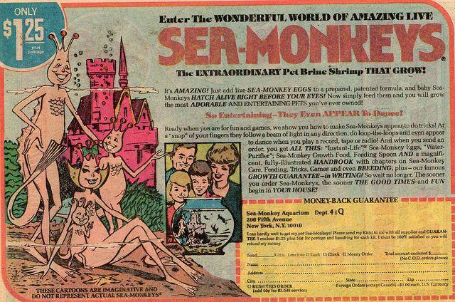 Sea Monkeys Ad Sea Monkeys Baby Boomers Memories Old Commercials