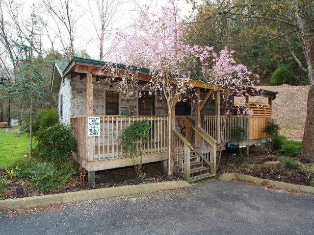 Davy Crockett 1 Bedroom Cabin At Parkside Cabin Rentals Gatlinburg Cabin Rentals Cabin Rentals Cabin
