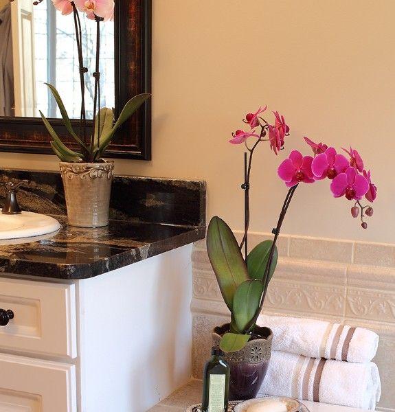 Badezimmer Badezimmer Kerzen Blumentopf Hell Beige Nuancen Grün