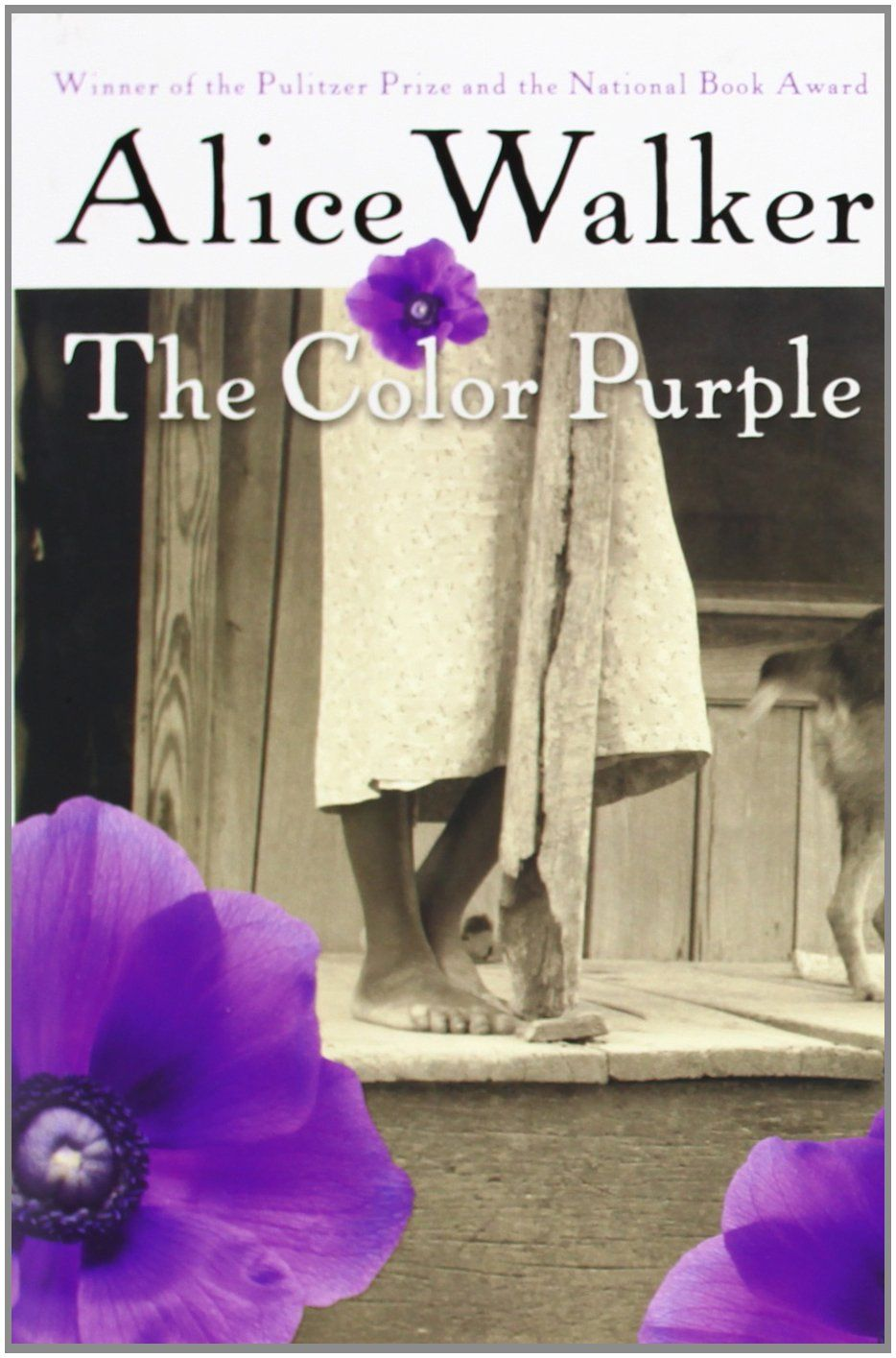 The Color Purple by Alice Walker / PS3573.A425 C6 1982 / http ...