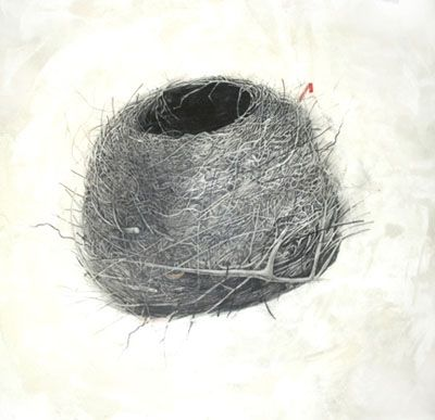 Sheila Ghidini - Works on Paper Hummingbird nest, graphite ...
