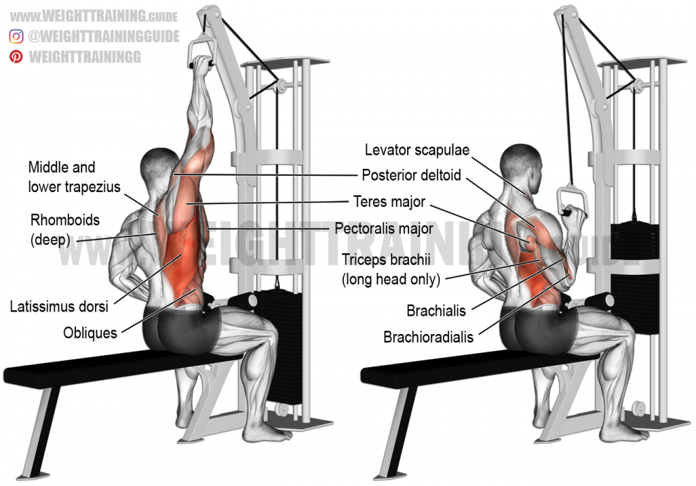 One Arm Lat Pull Down Exercise Guide And Video Fitness