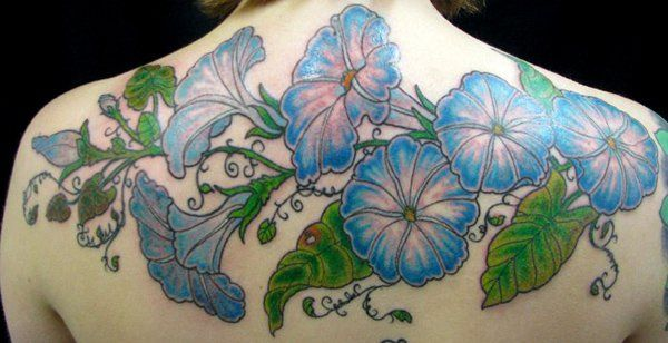 65 beautiful flower tattoo designs morning glory tattoo rh za pinterest com Purplish Blue Morning Glories morning glory flower tattoo designs