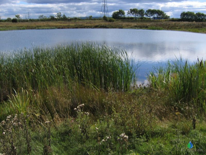Suds component retention pond basins wet pinterest for Design of stormwater detention ponds
