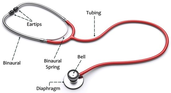tips to use a stethoscope in a proper way pinterest stethoscope rh pinterest com