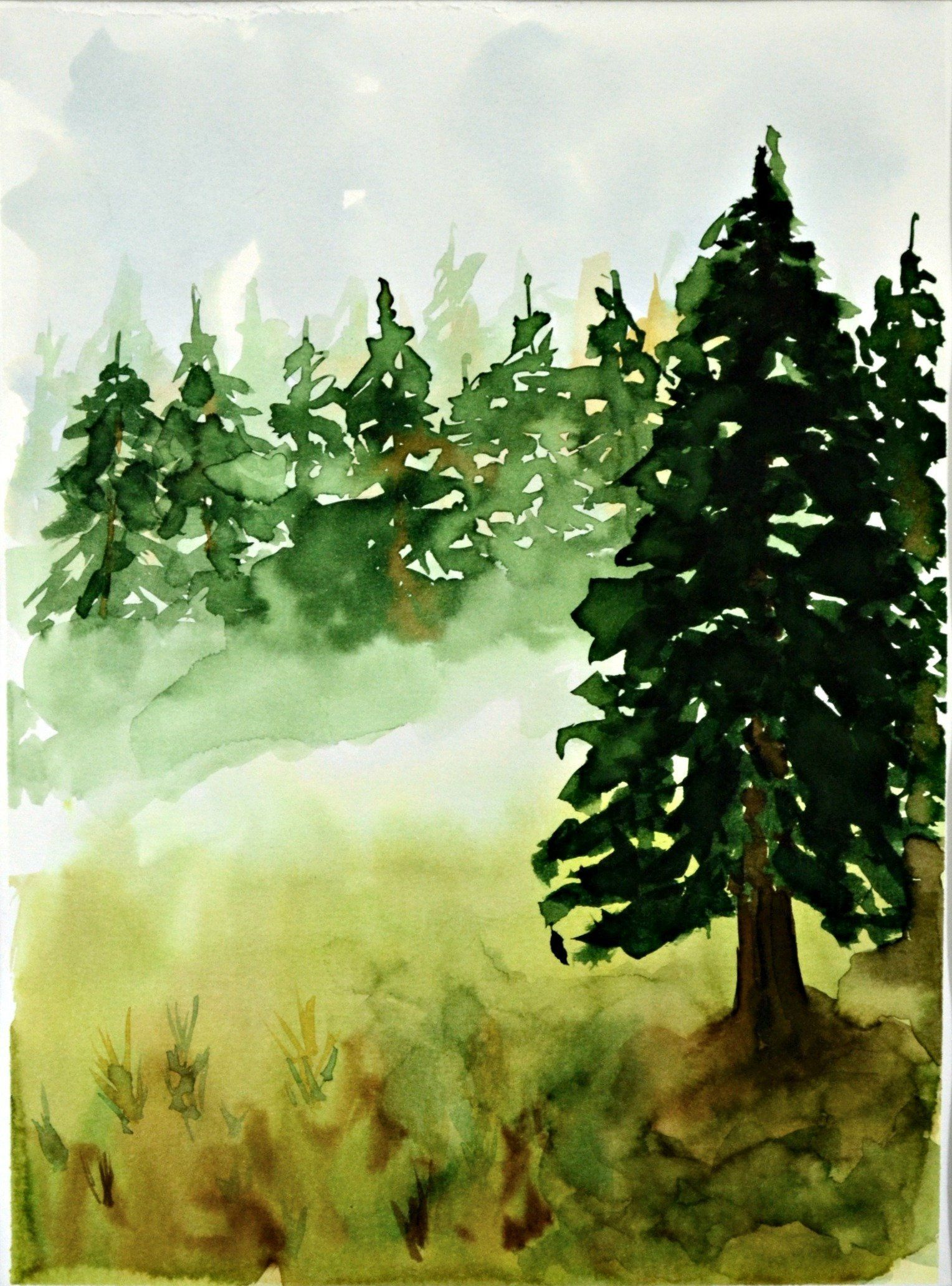 Evergreen Forest Pine Tree Forest Watercolor Landscape Green