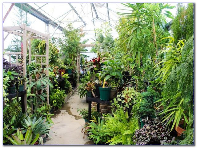 ONLINE Botany COURSES Accredited online high school