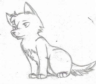 Photo of Anime Wolf Pup Drawings