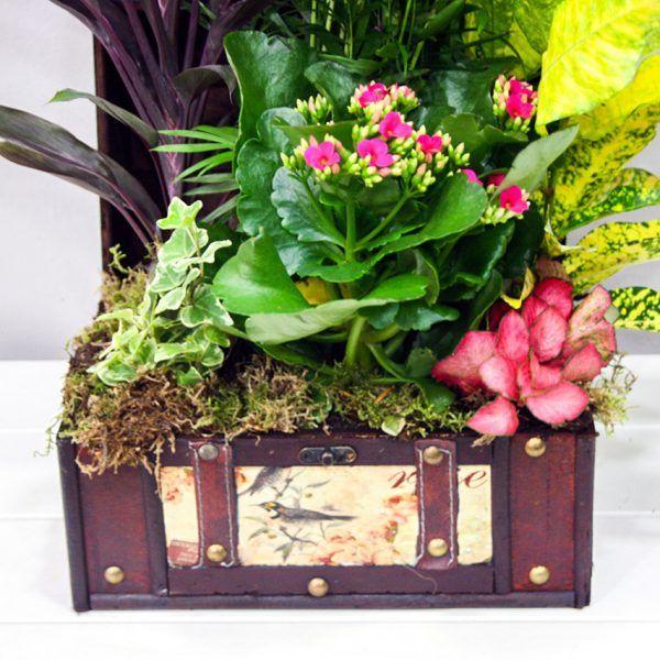 cofre bal cestas y composiciones floristera los santos nios alcal de henares - Composiciones Florales