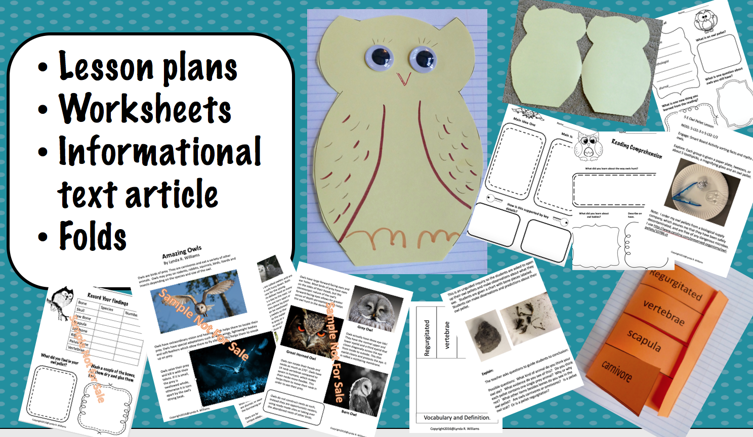 Food Chains Through Animal Track Mold Inquiry Lesson Idea