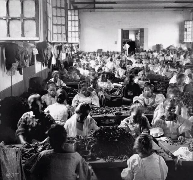 Cigar Factory In Philippine