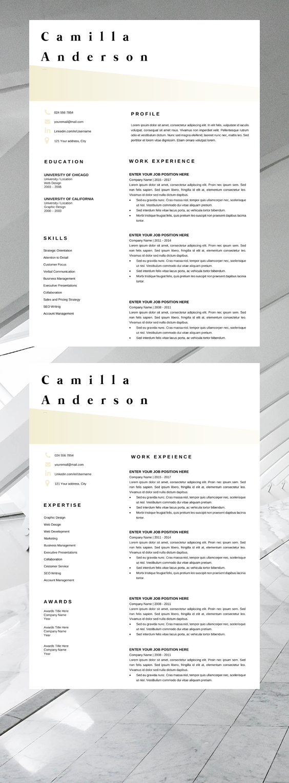 Resume Template Microsoft Word Professional CV Layout