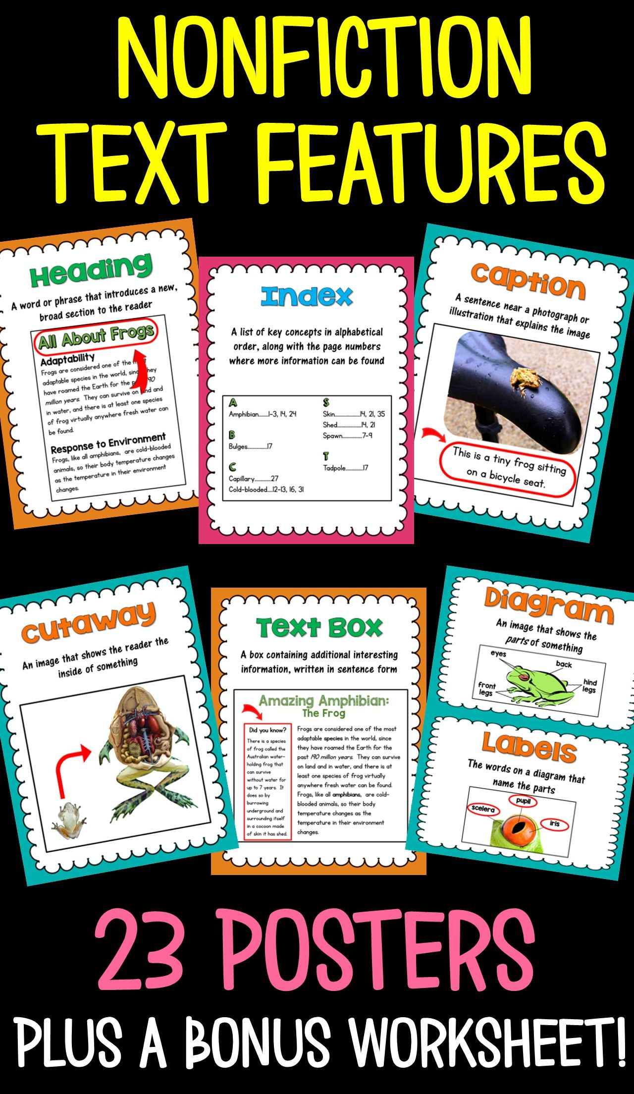 Nonfiction Text Feature Posters And A Matching Worksheet