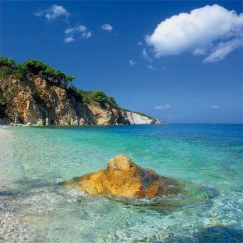 Isola d'Elba.. Una vacanza indimenticabile. Isola d'elba