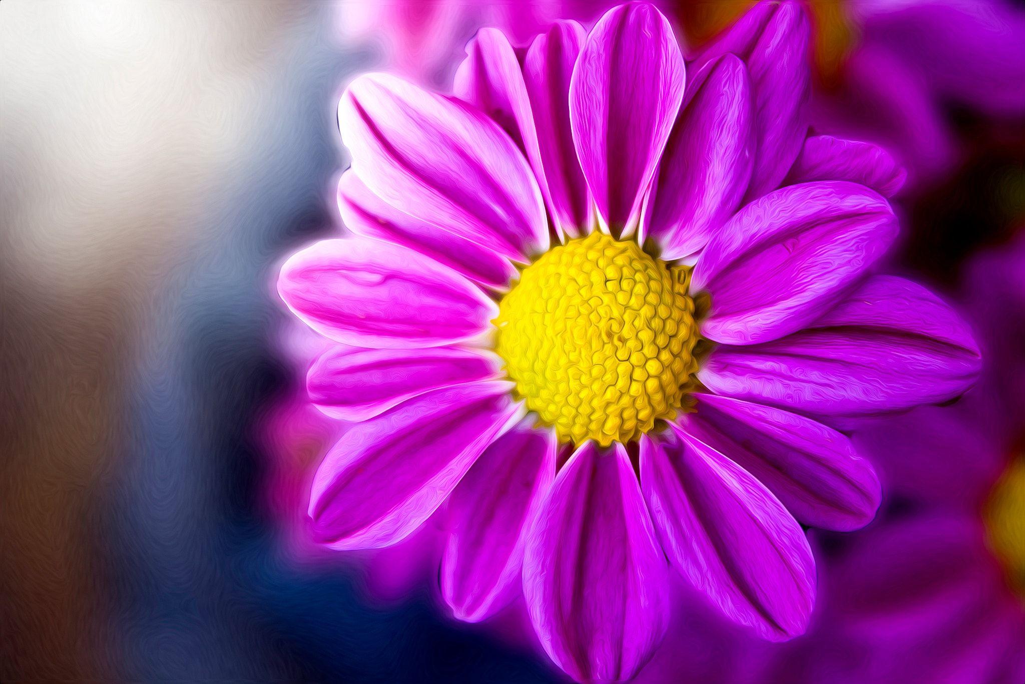 Glowing - Glowing Flower       Hope You Like It
