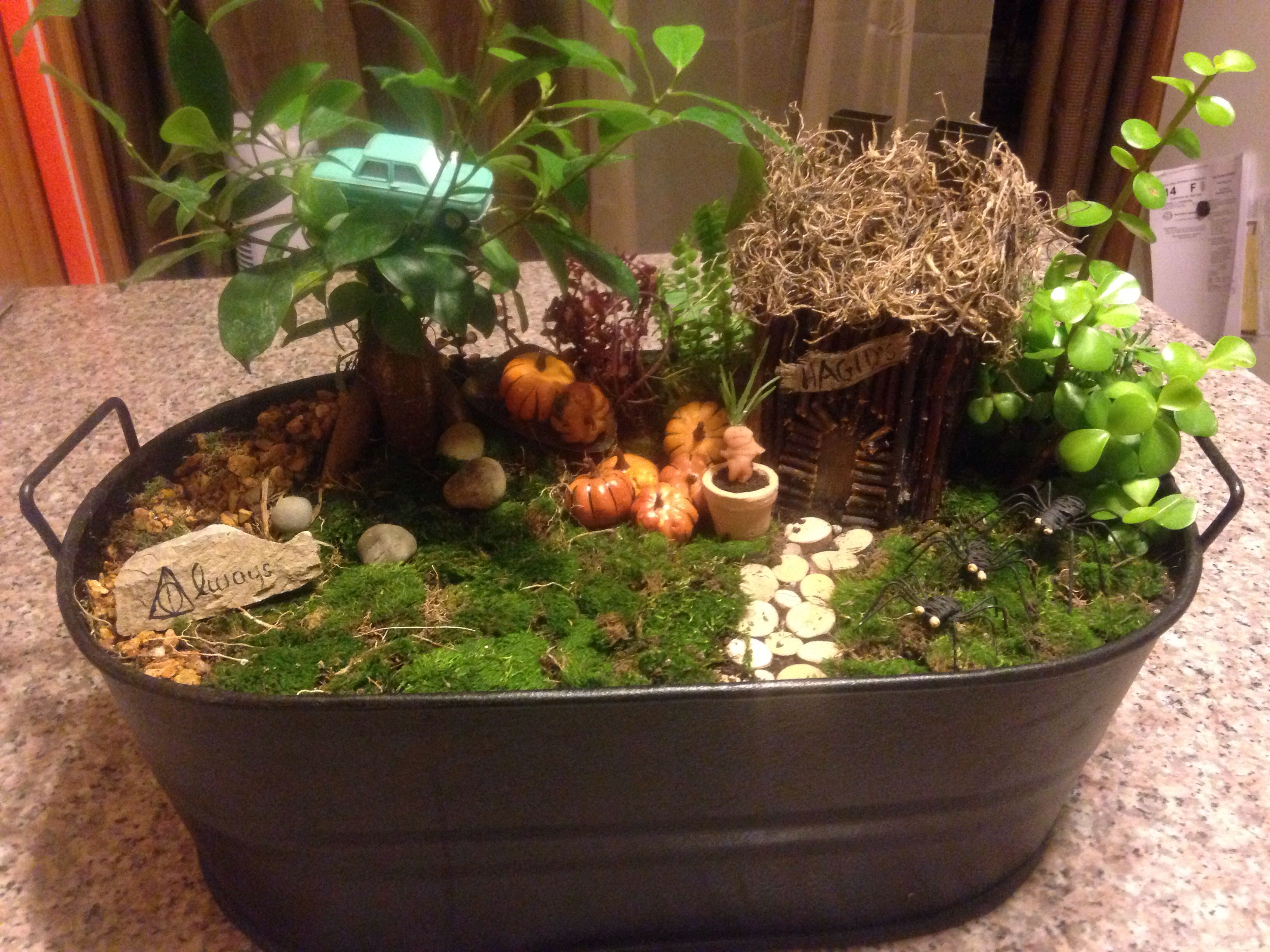 Harry Potter inspired Fairy Garden I made with my mother. | A touch ...