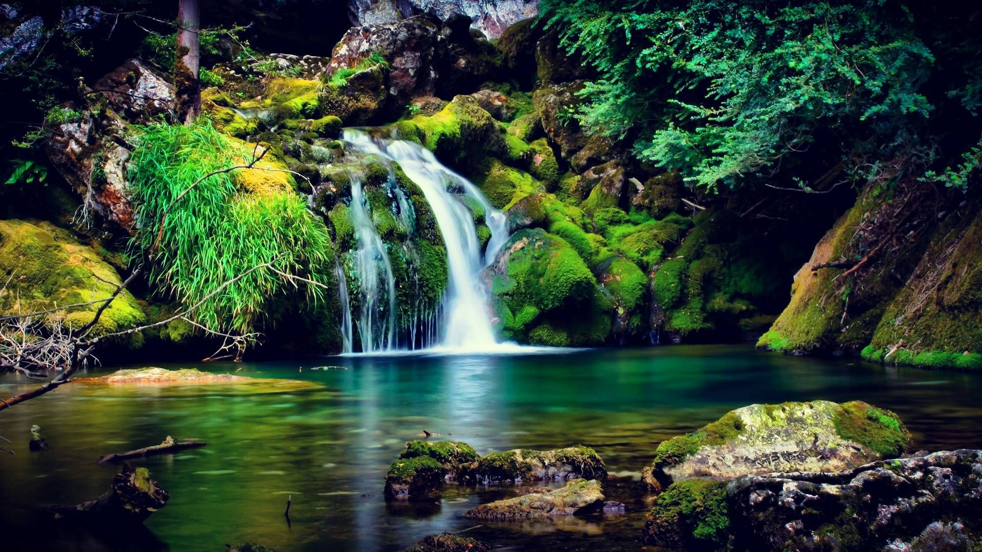 Waterfall HD Wallpaper Garden Of Eden