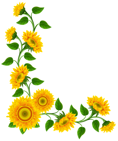 Sunflower border decoration png clipart image fonts for Decoration png