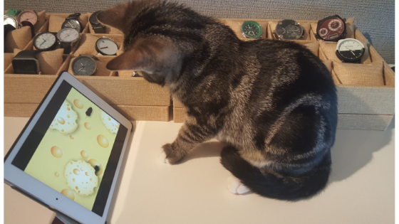 Cat plays mouse game on iPad Cat app, Cats, Cat urine