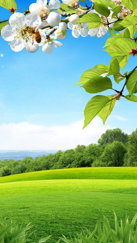 Iphone 7 Wallpaper Beautiful Spring Beautiful Nature Wallpaper Beautiful Landscape Wallpaper Attractive Wallpapers