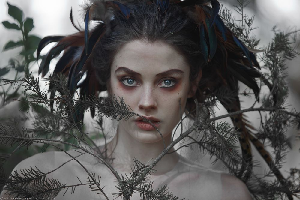 CREATURES OF THE FOREST on Behance
