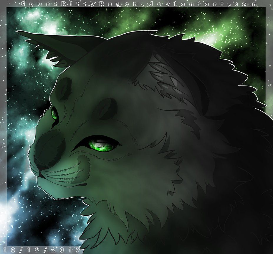 Hollyleaf By CountKittyRugendeviantart On DeviantArt Warrior CatsWarriors