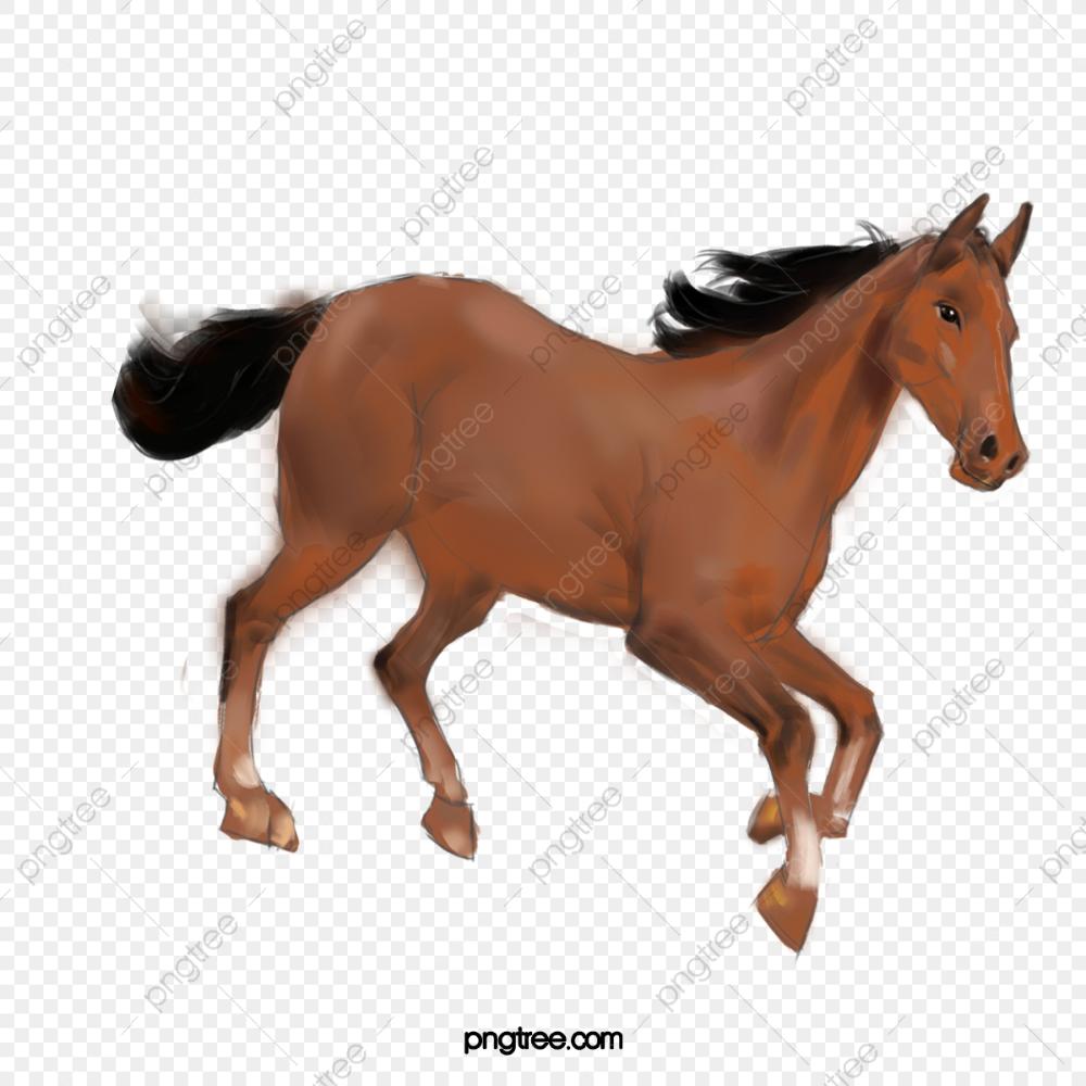 الحصان ناقلات صورة حصان المواد حصان الخيول الظلية كارتون جميل Png وملف Psd للتحميل مجانا Horse Pictures Horses Pictures