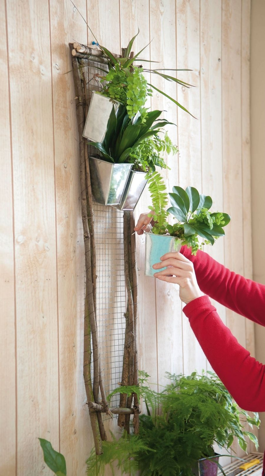 Creation Mur Vegetal Exterieur do it yourself : cadre végétal ! | cadre végétal, deco mur