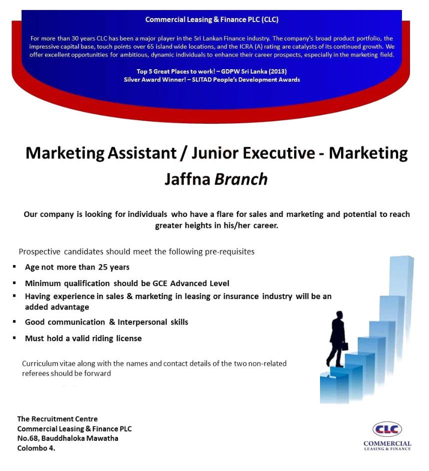 Marketing Junior Executive Job Executive Jobs Marketing Jobs Execution