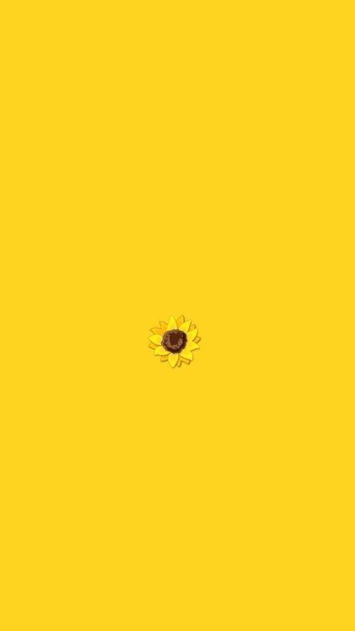 Aesthetic Flower Yellow Wallpaper For Iphone 11 In 2020 Iphone Wallpaper Yellow Yellow Wallpaper Yellow Aesthetic