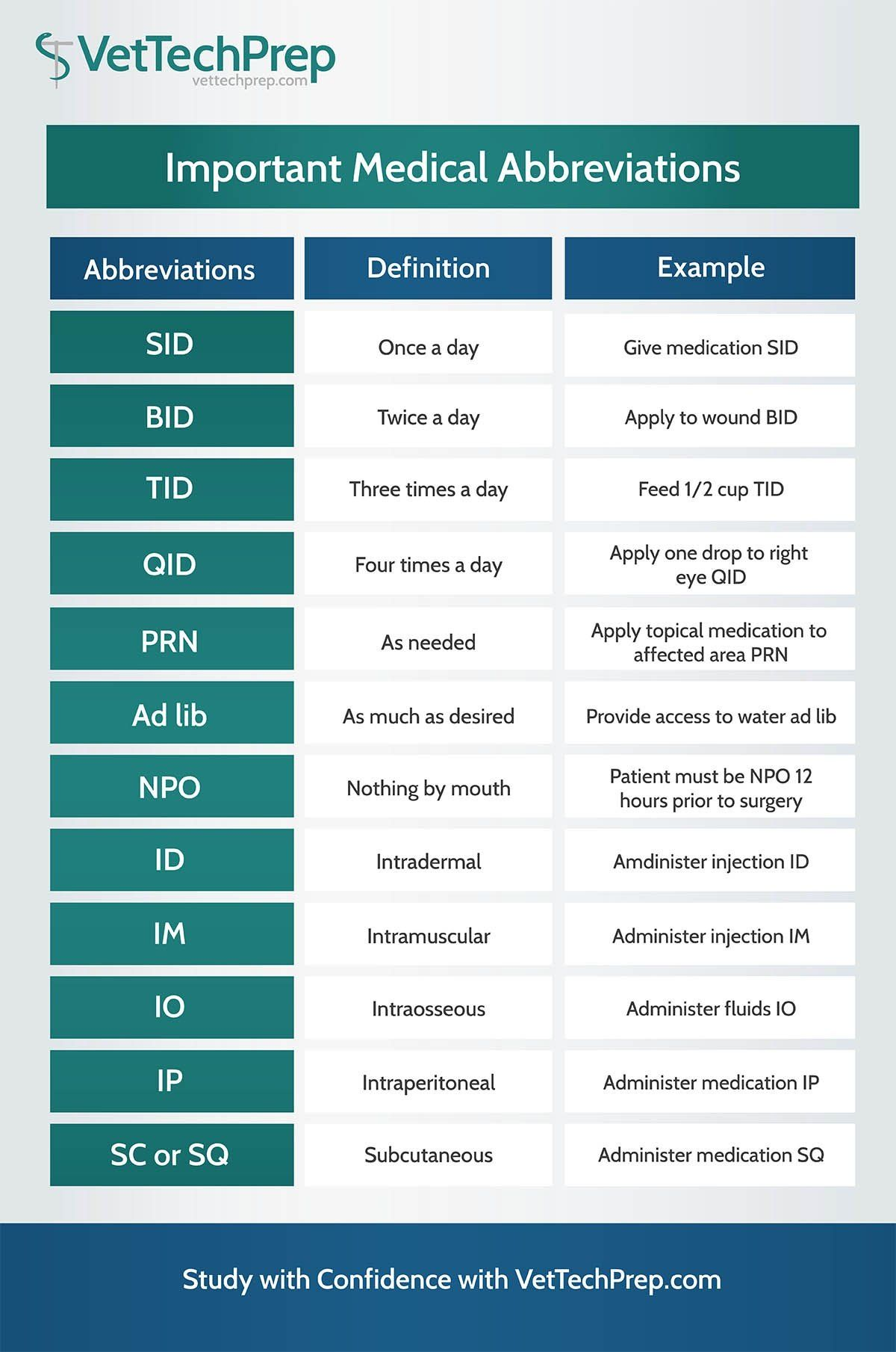 Infographic Important Medical Abbreviations for Vet Techs