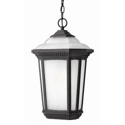 Hinkley Lighting Park Ridge 1 Light Outdoor Hanging Lantern Bulb Type: Standard