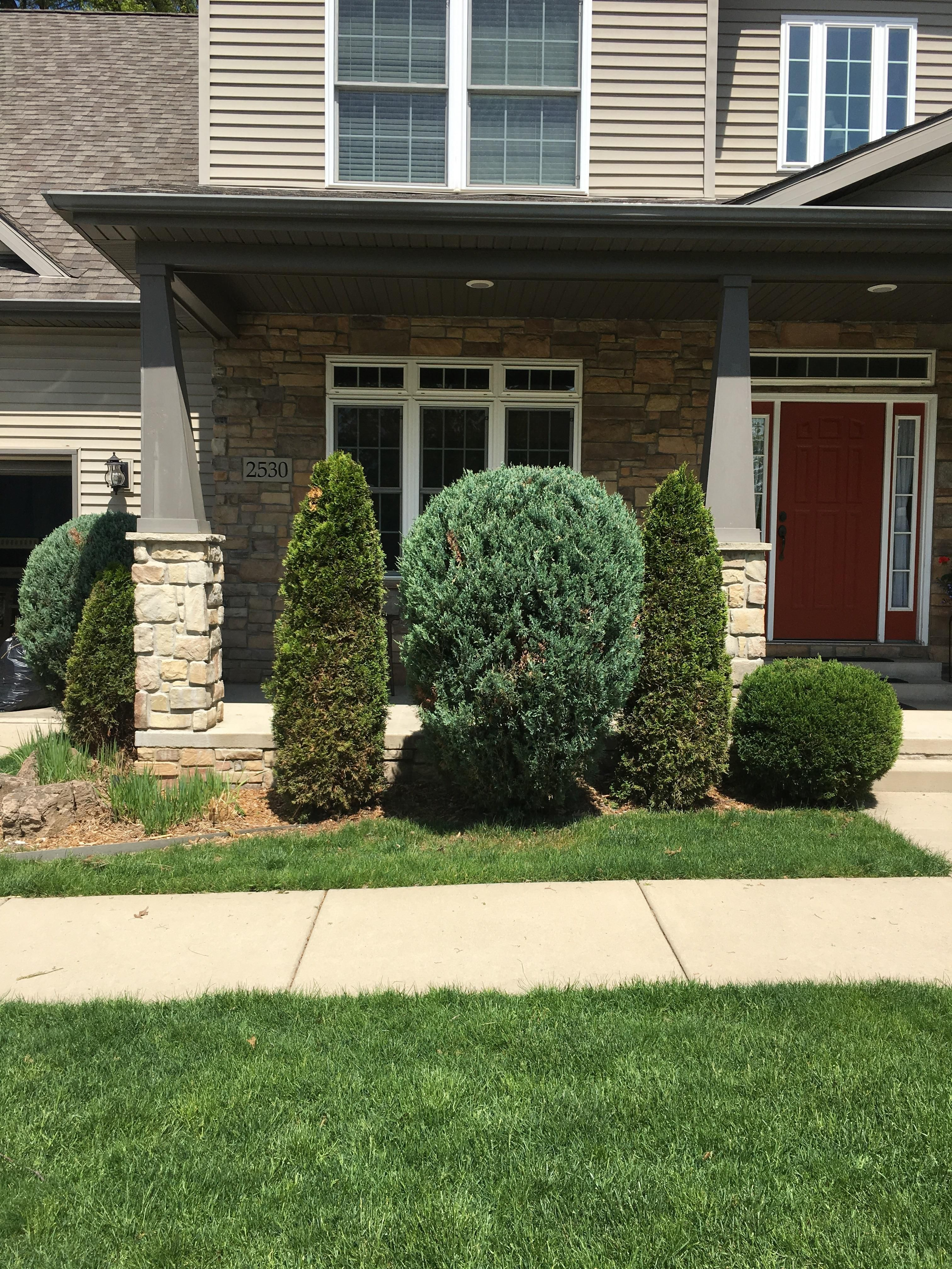 Help With Replacing These Overgrown Bushes Im In Zone 5 Northwest Indiana I Would Like To Take T Organic Gardening Books Educational Garden Low Growing Shrubs