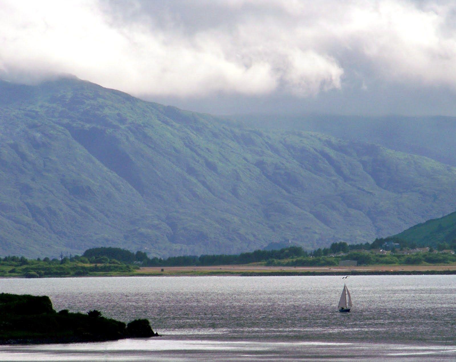 Kodiak Harbor  (photo by jone suleski)