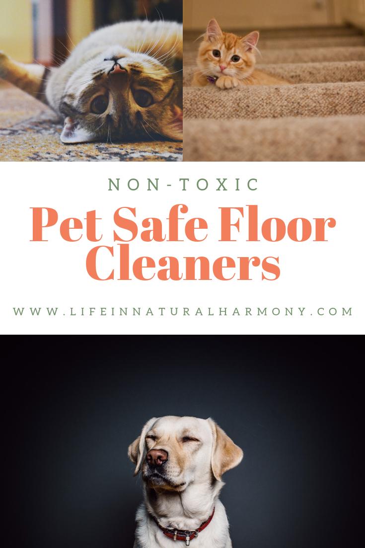 Pet Safe Floor Cleaners