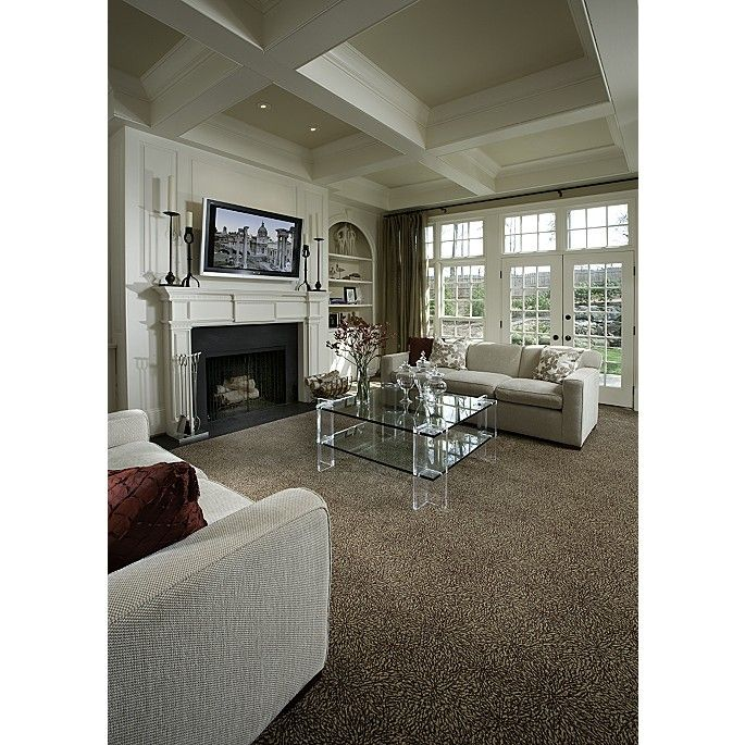 Brown Carpet Perfect Colour To Warm Up What Could Be Otherwise A Cool Interior Brown Carpet Living Room Living Room Carpet Brown Living Room