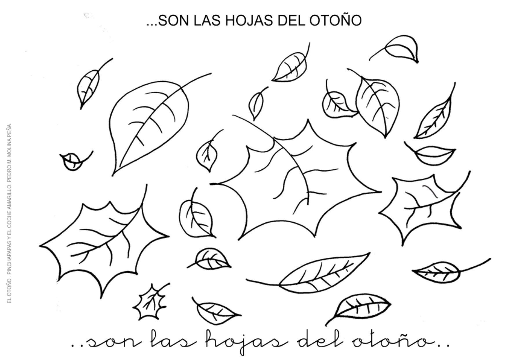 Único Hoja Para Colorear Preescolar Colección de Imágenes - Dibujos ...