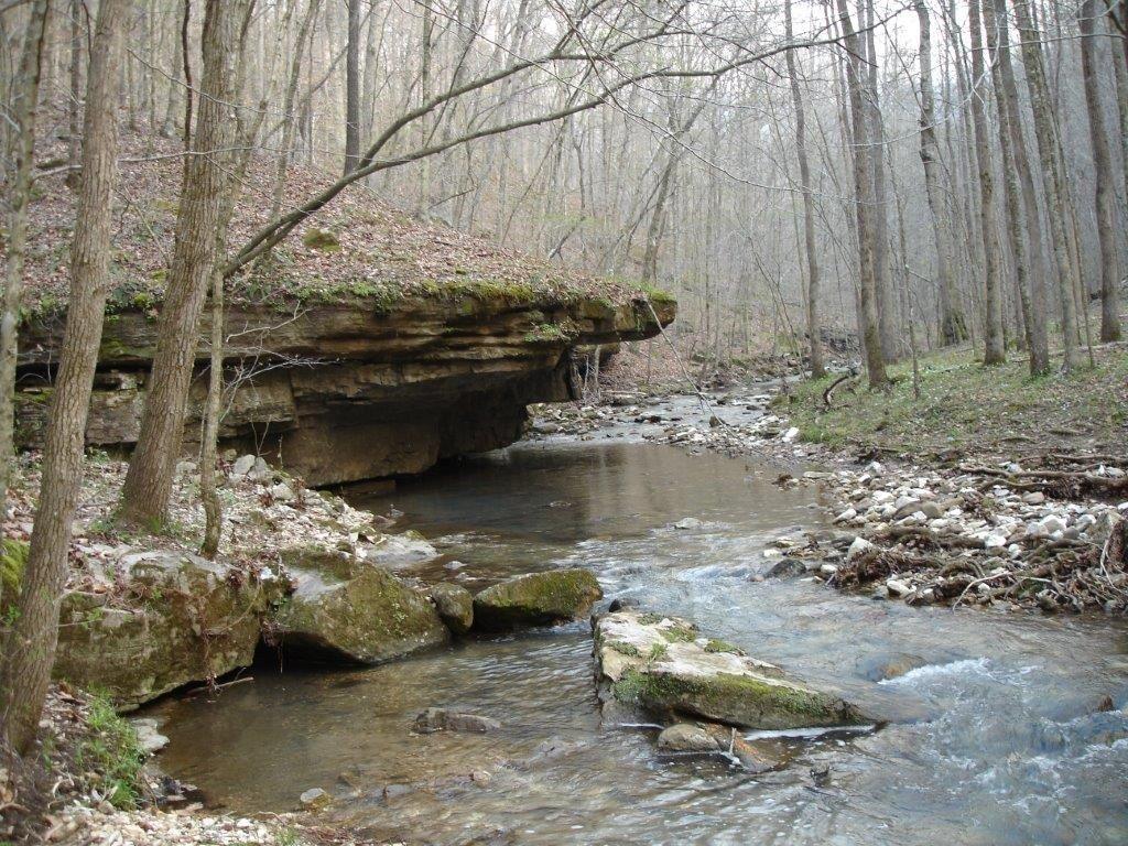 Leatherwood Creek Near The Buffalo National River Our