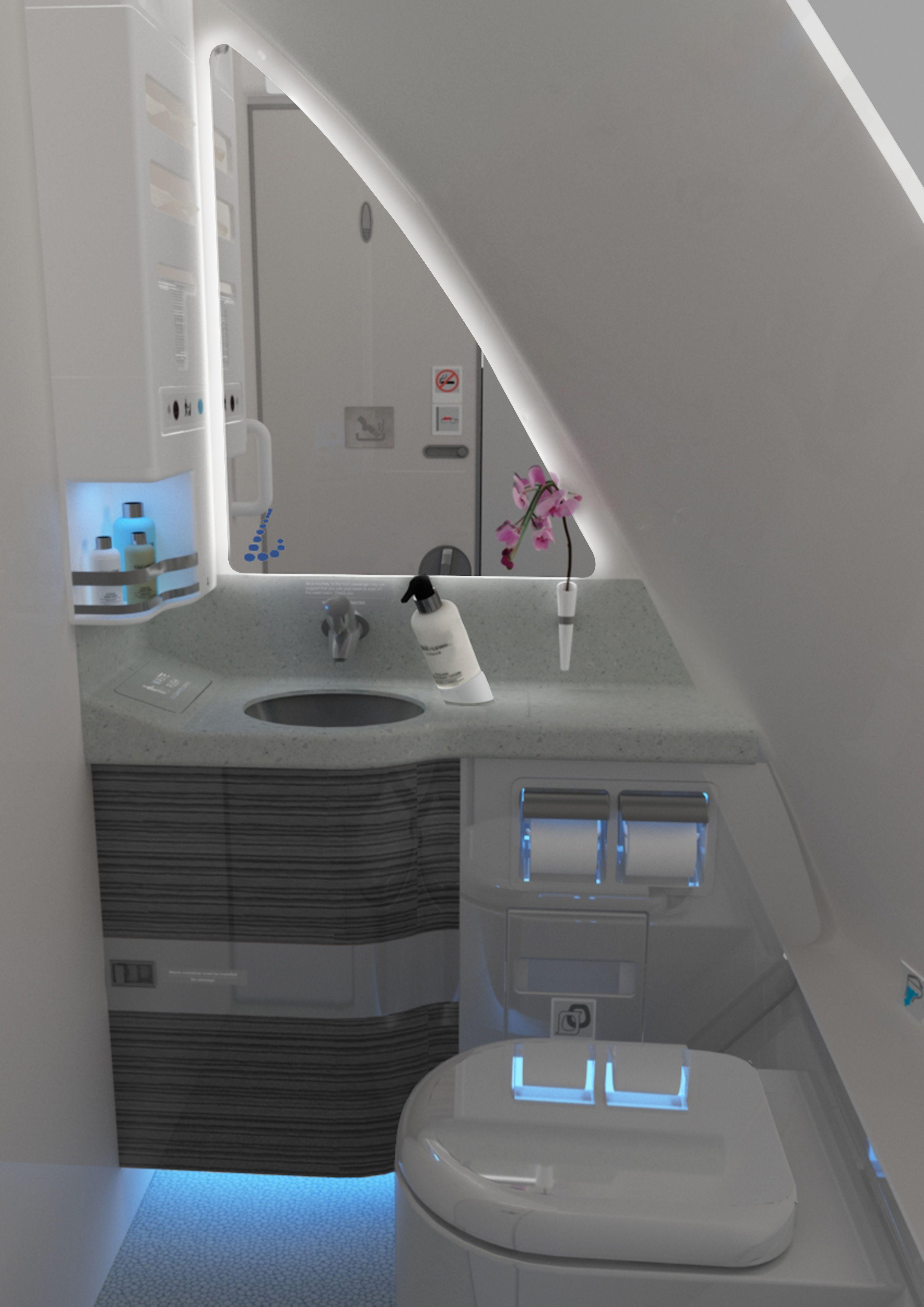 Handicap Bathroom Airplane pinvilo_vilo on luxury | pinterest | falcons and toilet