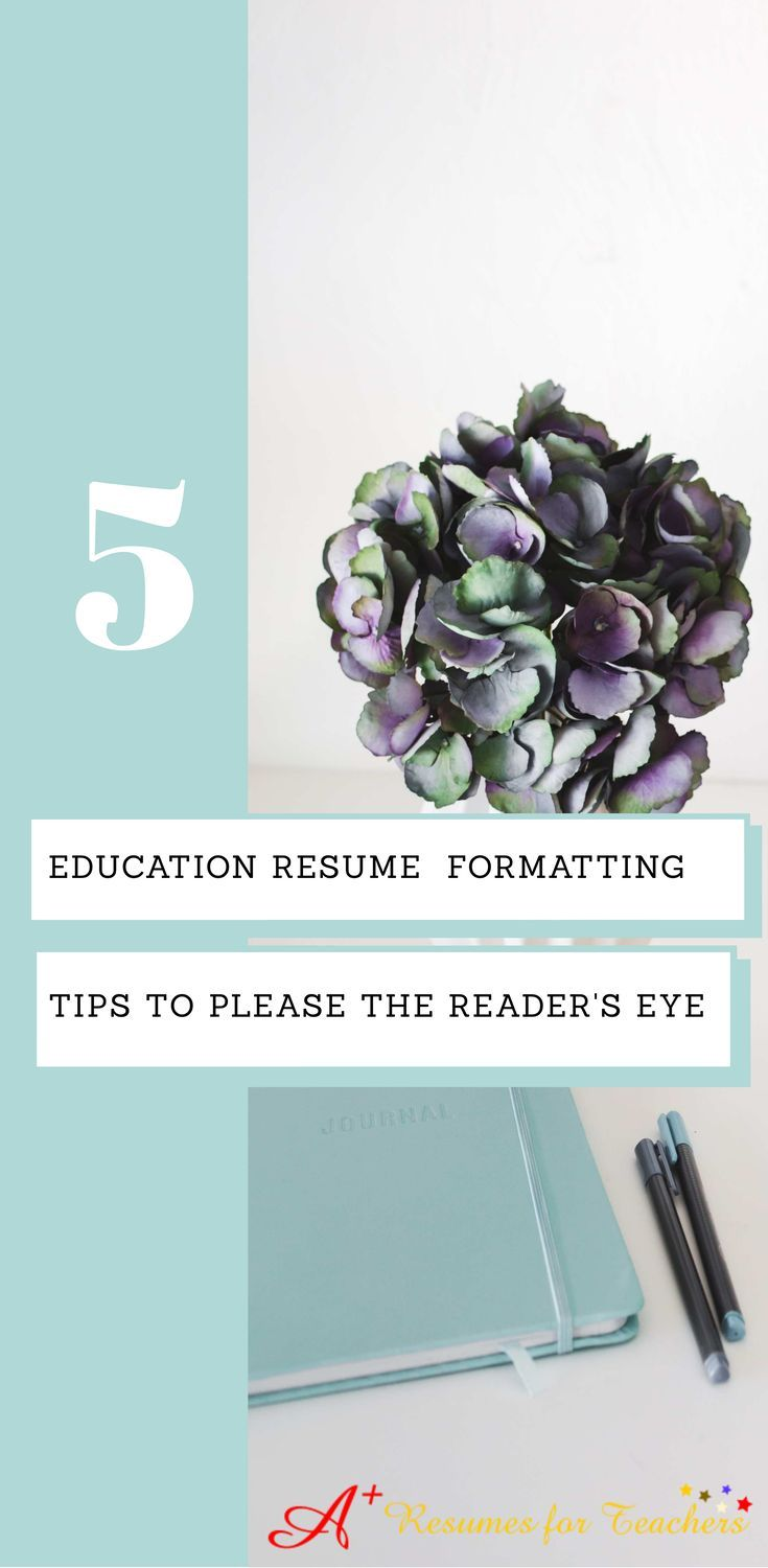 education on a resume delectable 62 best job search images